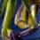 nathalie-tirot-iris