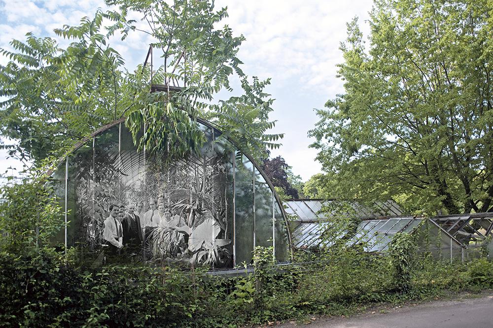 Elèves de L INAC dans la grande serre du Jardin d'Agronomie Tropicale de Paris en 1934